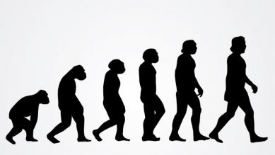 02212018-evolution.jpg
